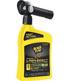 Extreme Lawn Insect Killer Plus Fungus Control (Ready-to-Spray